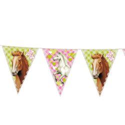 Flags Line Horses