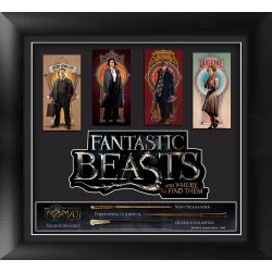 Fantastic Beasts And Where To Find Them: Framed Movie Art