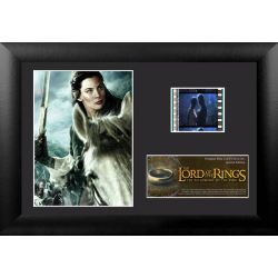 The Lord of the Rings: The Fellowship of the Ring Arwin Frame