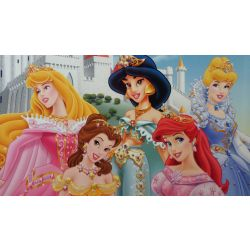Disney Princess Placemat 2