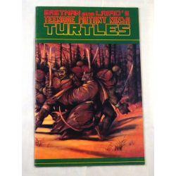Teenage Mutant Ninja Turtles Vol.1 ed. 31 Souls Winter