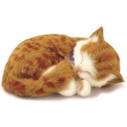 Perfect Petzzz soft Kitten Orange