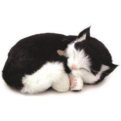Perfect Petzzz soft Kitten