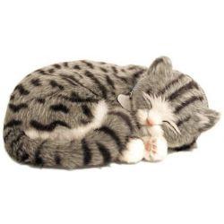 Perfect Petzzz soft Kitten Grey