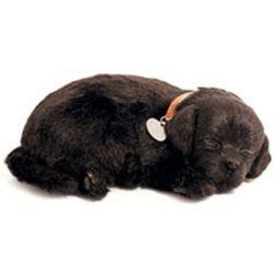 Perfect Petzzz soft Black Labrador