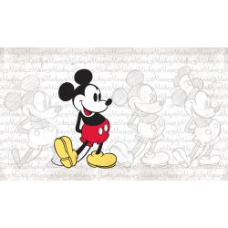 Mickey Mouse Cartoon Wallpaper Sticker